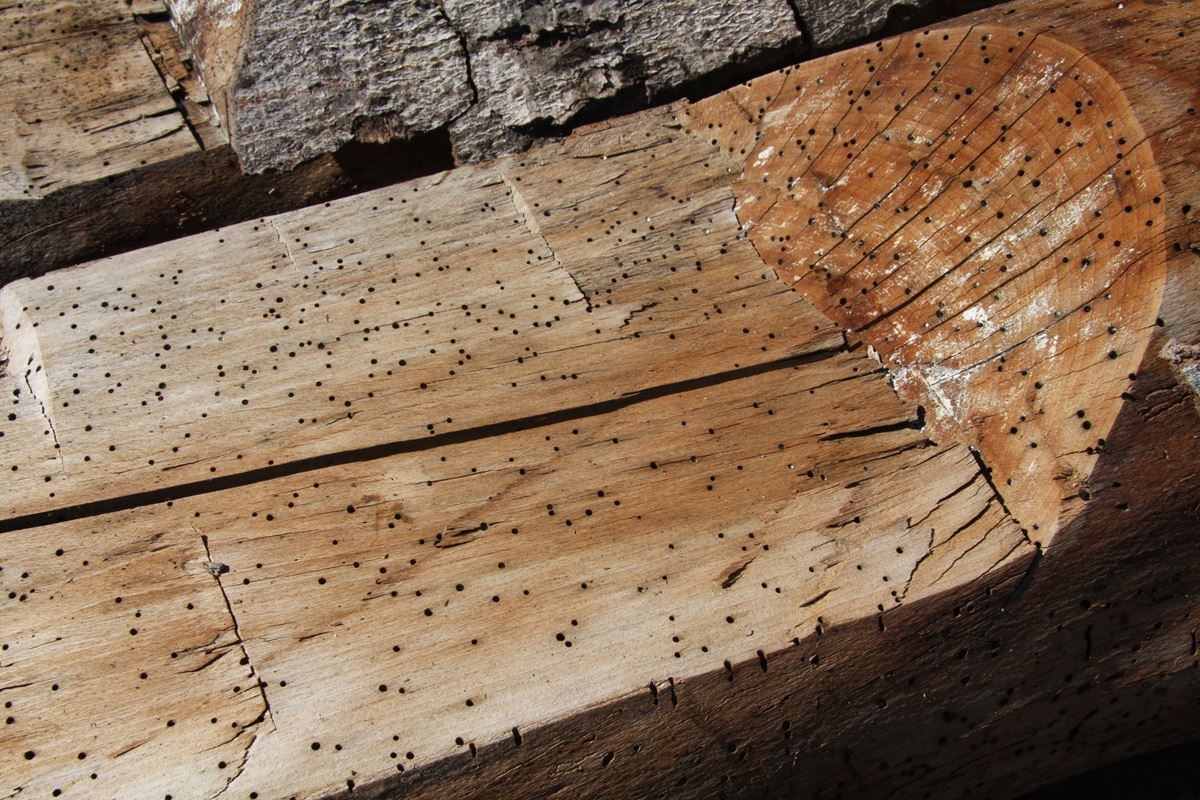 Triple B Enterprises The Reclaimed Timber Company Reclaimed Timber Company - Your Source For Reclaimed Wall Cladding